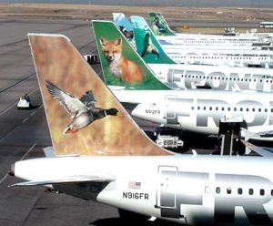 Graphic installations on airplanes